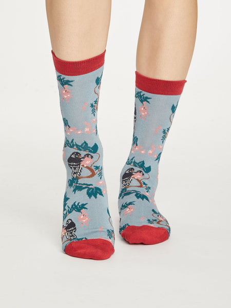 Bird Bamboo Socks in Dusty Blue by Thought Size 4-7-bamboofeet