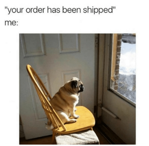 your order has been shipped meme