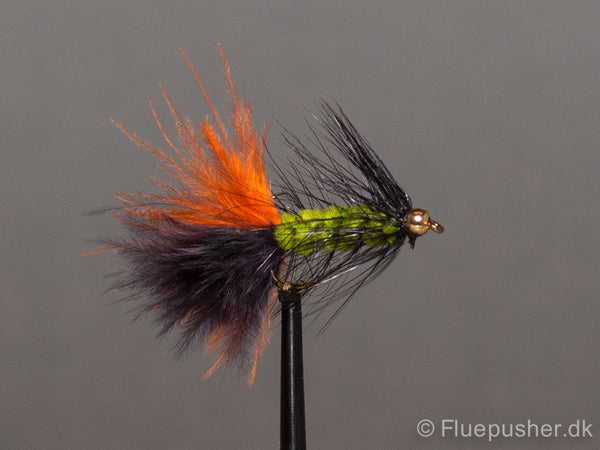 Safari Woolly bugger