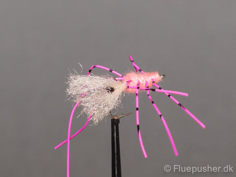 Pink legged shrimp