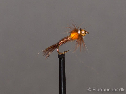Pheasant tail orange