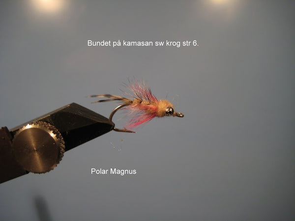 Polar Magnus mini