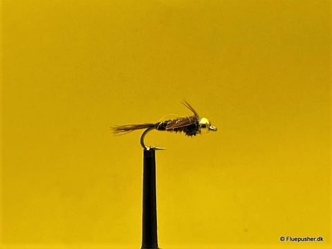 Wingcase  Pheasant tail