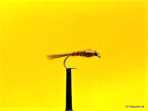 Brown goldribbet Pheasant tail