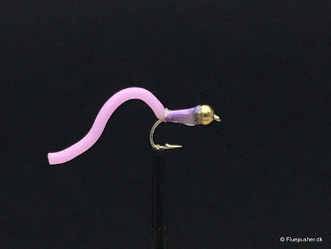 Purple worm