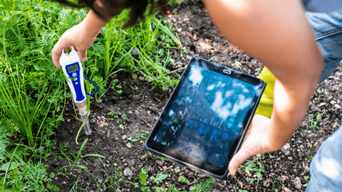 how to perform a soil test at home