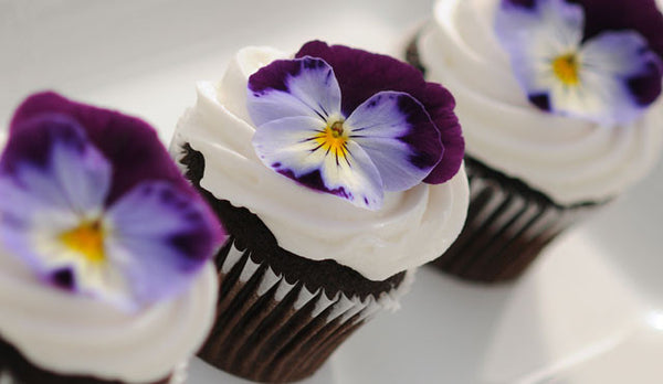 Pretty Pansy Cupcakes