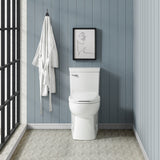Classé One-Piece Elongated Toilet