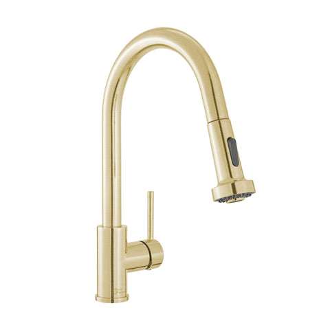 Nouvet Single Handle, Pull-Down Kitchen Faucet in Brushed Gold