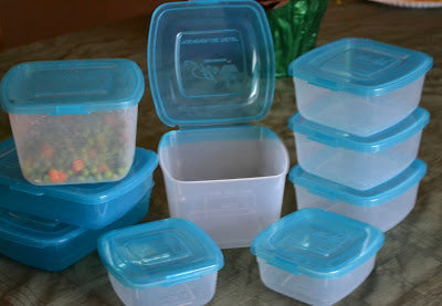 Mr. Lid – Food Storage Containers with an attached Lid review.