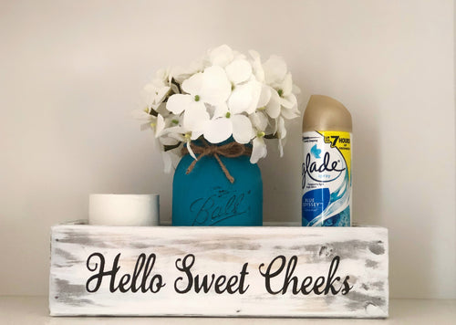 Hello Sweet Cheeks Toilet Box - stacys-country-designs