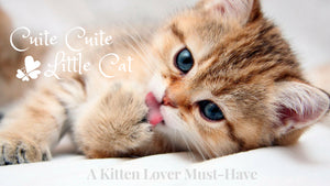 Purrfect Gifts for Kitten Lovers