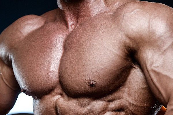 The Ultimate Upper Chest Workout & Lower Chest Workout Guide