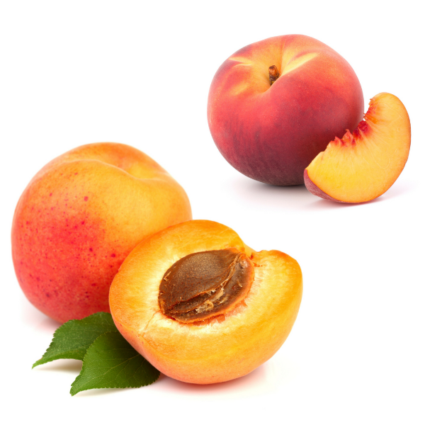 8 oz Apricot & Peach Whipped Butter (FREE SHIPPING)