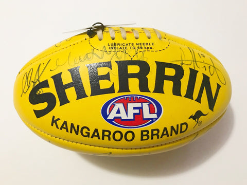 AFL Brisbane Lions signed game used football