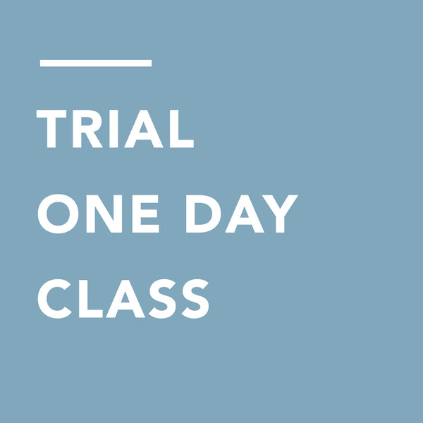 [VM] TRIAL ONE DAY CLASS