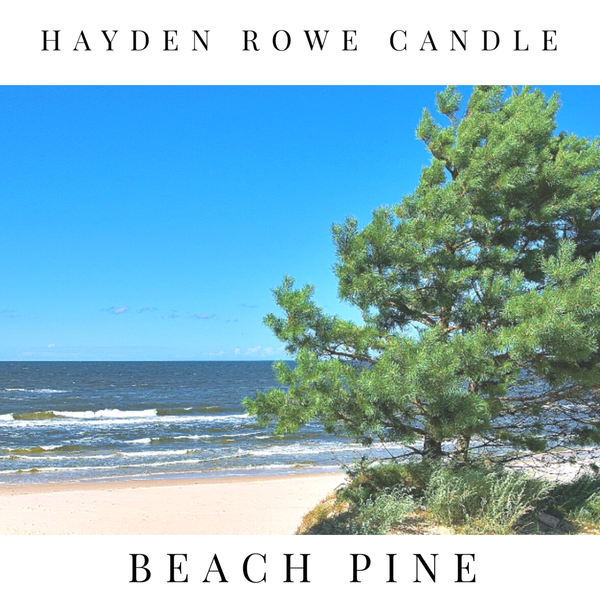 Beach Pine Scented Wax