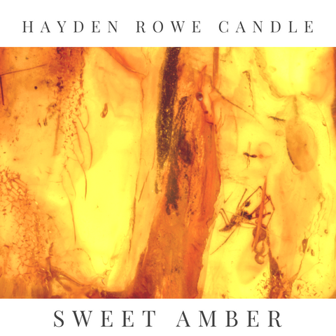 Sweet Amber Scented Wax