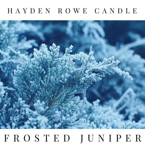 Frosted Juniper Scented Wax