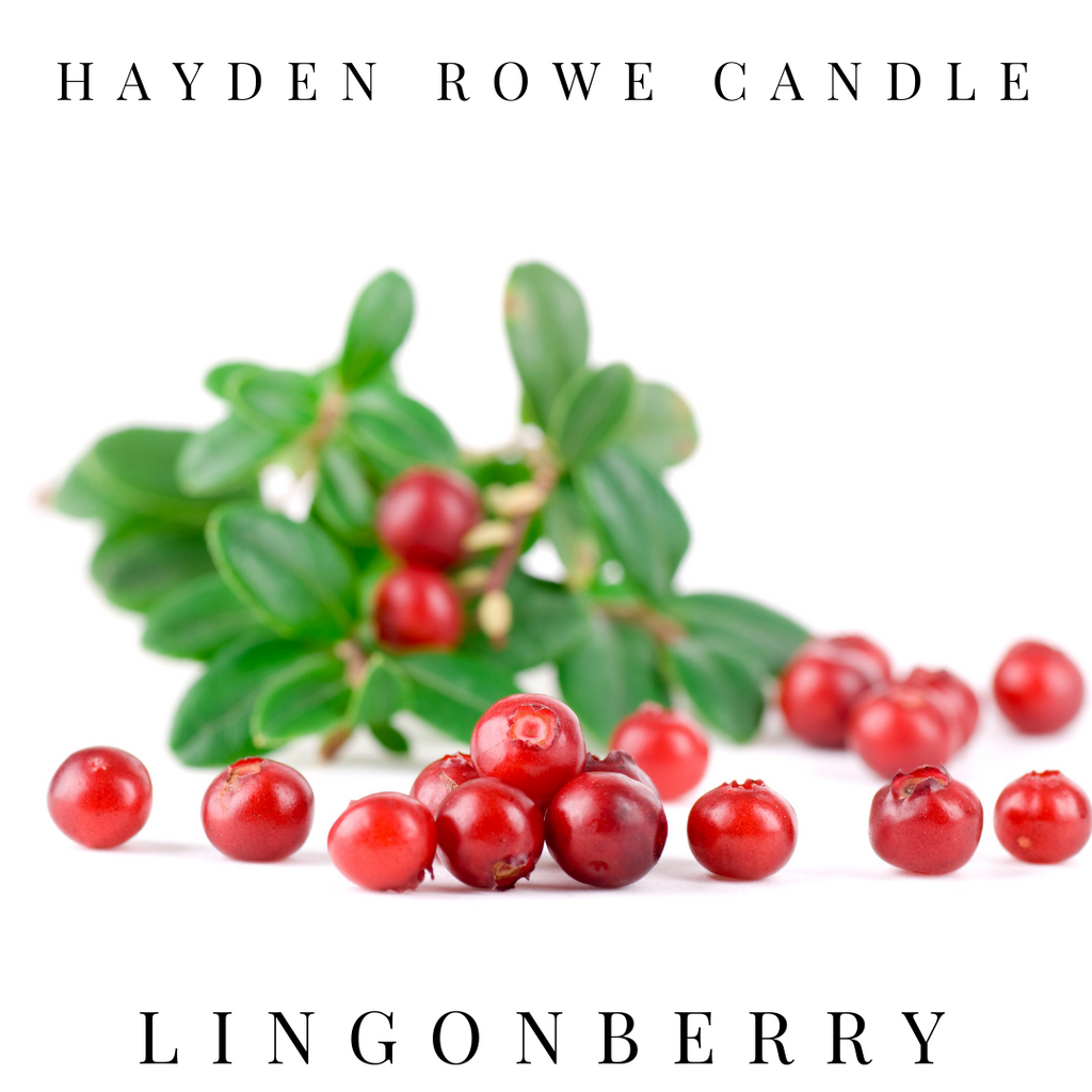 Lingonberry Scented Wax