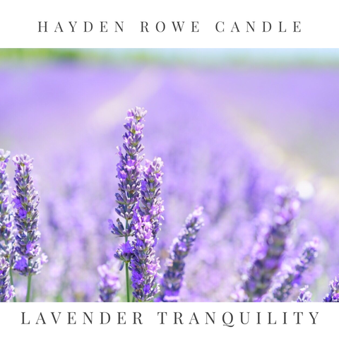 Lavender Tranquility Scented Wax
