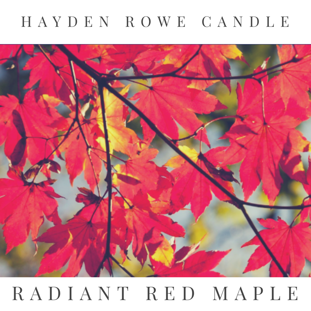 Radiant Red Maple Scented Wax