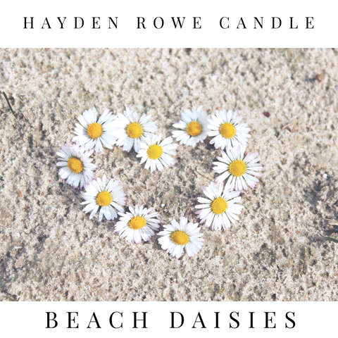 Beach Daisies Scented Wax