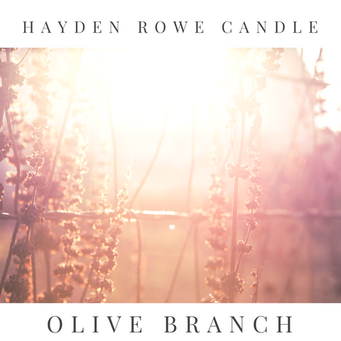 Olive Branch Scented Wax