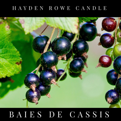 Baies de Cassis Scented Wax