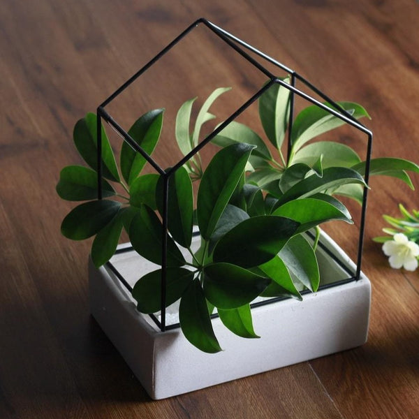 Garden City House Planter - Large