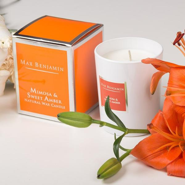 Mimosa and Sweet Amber Scented Candle - Modern Quests