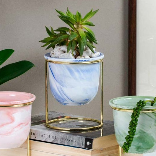 Oasis Tabletop Small Planter - Blue