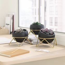 Potsy Planters, Set of 3 - Black Brass
