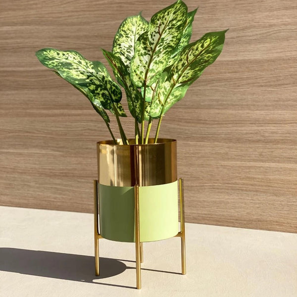 Tampa Planter - Mint Gold