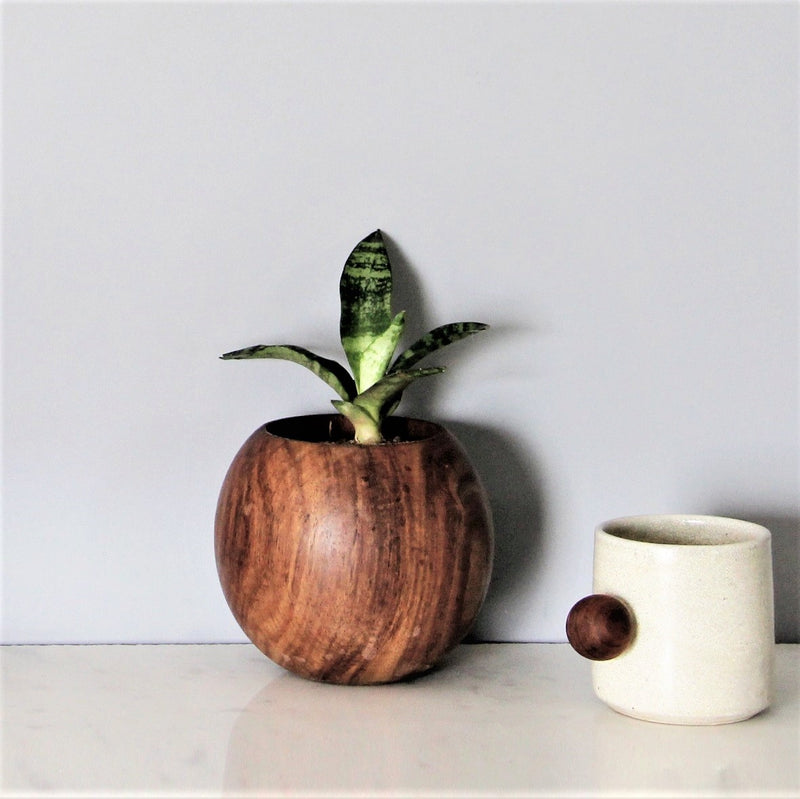 Wooden Ball Planter