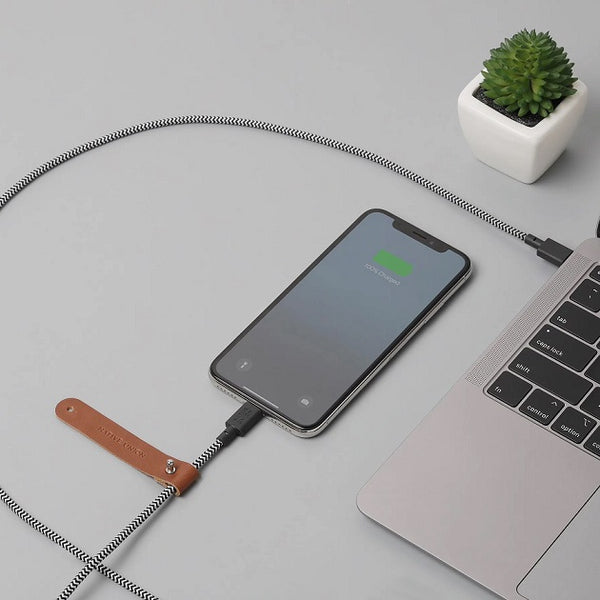 Belt Cable Apple USB-C to Lightning - Zebra