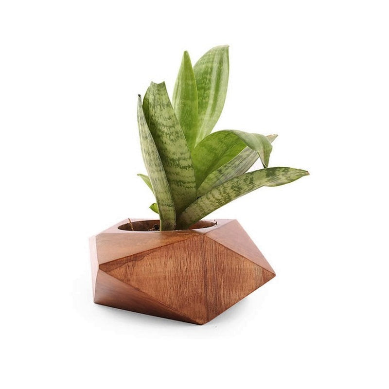Wooden Facet Planter - Short