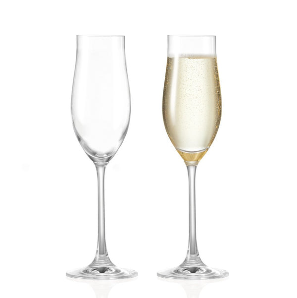 Fine Champagne Glasses, Set of 6