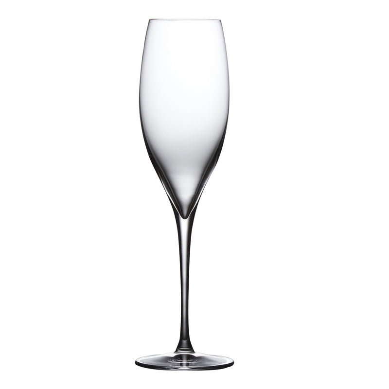 Terroir Champagne Glasses, Set of 2