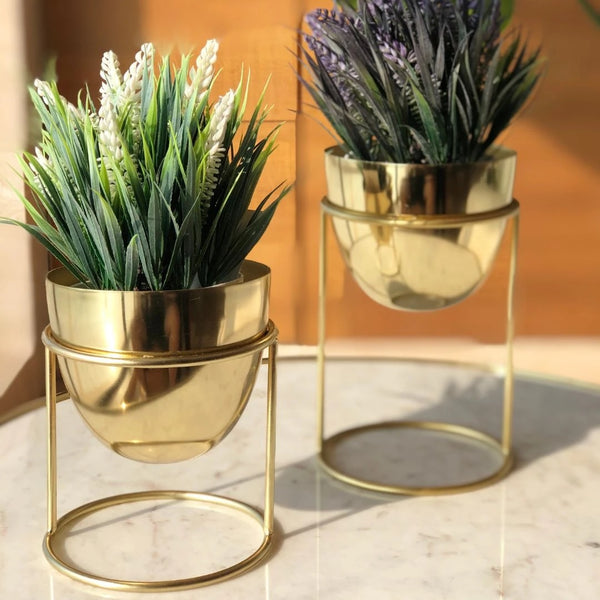 Olvera Small Desk Planters, Set of 2 - Gold