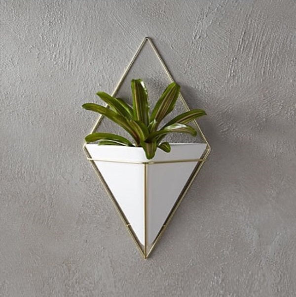 Trigg Wall Vessel, Large - Brass