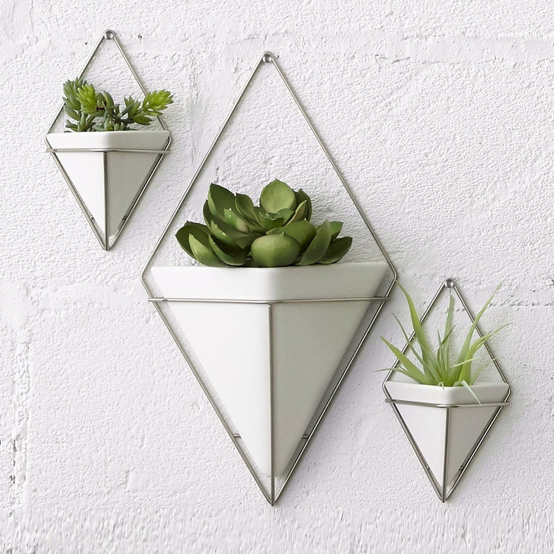Trigg Wall Vessel, Set of 2 - Nickel