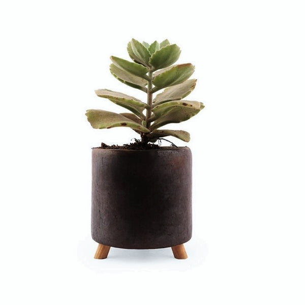 Small Tripod Planter
