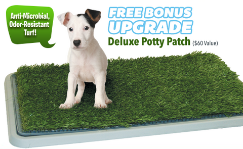 3 Tier Potty patch for puppies, small dogs, large dogs, and even cats.