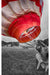 B&W Red Balloon