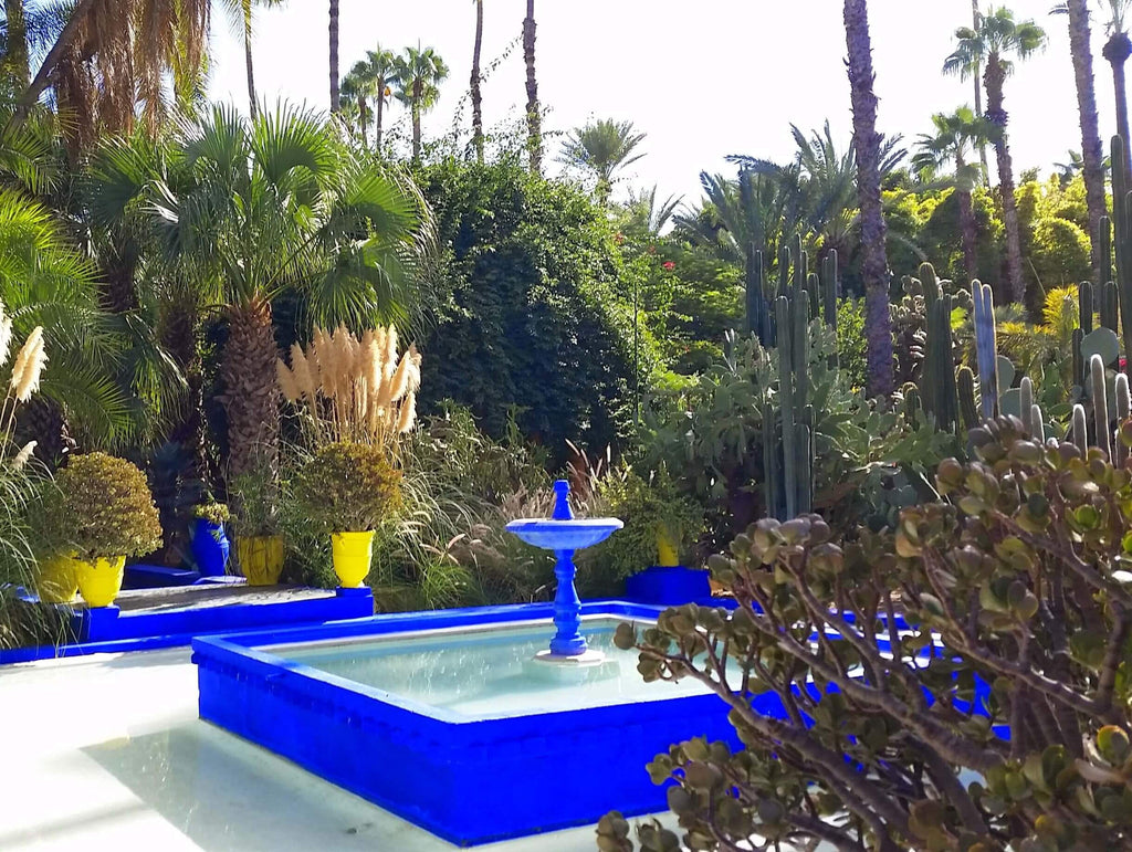 The Bright Yellow Sun Shines on Majorelle Blues