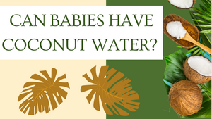 Can Babies Have Coconut Water: A Quick Guide