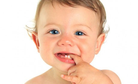 My kid just started developing his first set of teeth. What can I do to ensure that my child dental formula is okay?