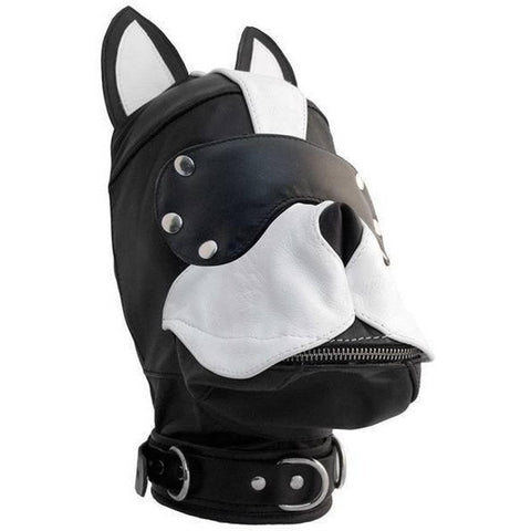 XPLCIT Assistance, Leather Dog Hood - White, Puppy Play, Mister B,