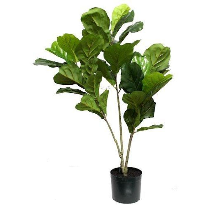 Fiddle Leaf Fig Tree | Artificial